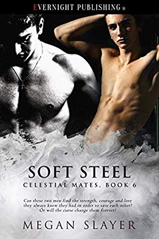 Review: Soft Steel by Megan Slayer
