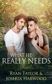 Guest Post and Giveaway: What He Really Needs by Ryan Taylor and Joshua Harwood