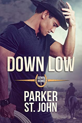Review: Down Low by Parker St. John