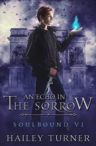 echo in the sorrow cover