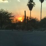 Beautiful Arizona sunsets