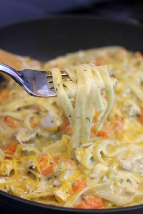 Most popular recipes from Joyful Momma's Kitchen: Creamy Pasta spun on fork