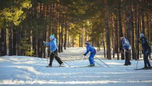 Family enjoying skiing together