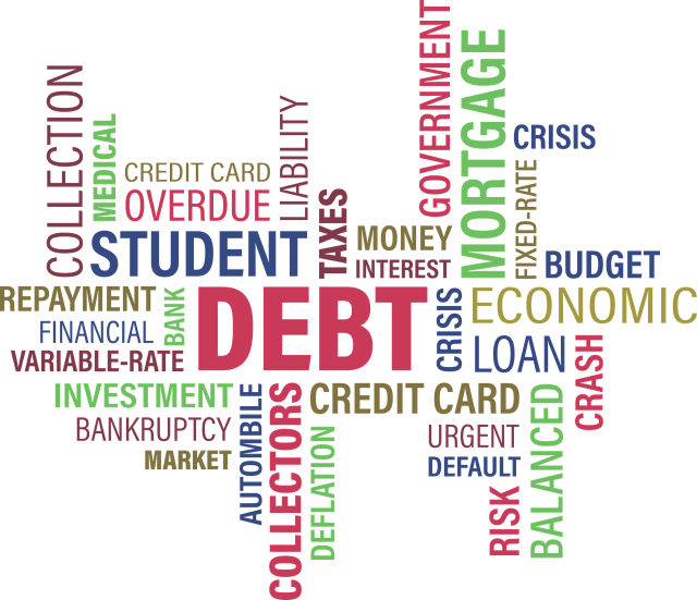 debt text