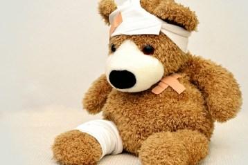 injured bear