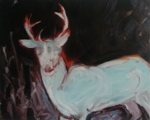 White Stag (Night Vision), 2014, oil/canvas, 24x30 inches