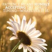 meme-patience-1474592-gallery