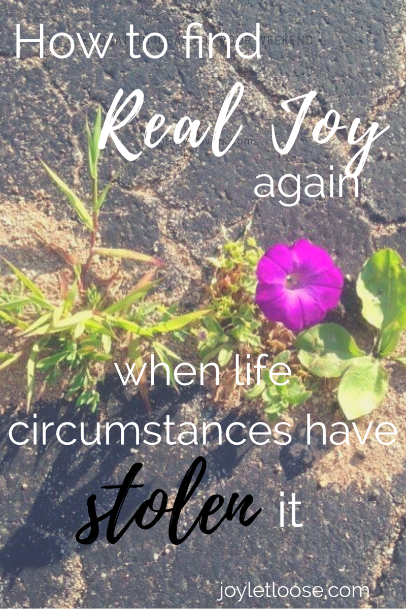 3fb42dafc6e58 How to Find Real Joy Again when Life Circumstances have Stolen it (A ...