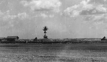 canton-island (2)
