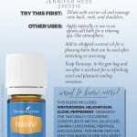 Day 8 Panaway Essential Oil Joyous Oiler The Use Of Essential Oils