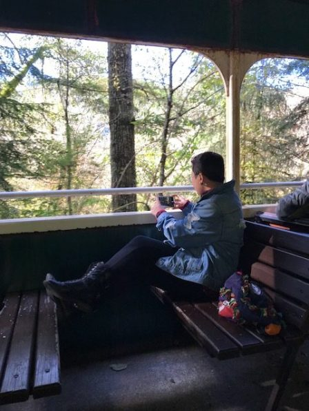 NatureRx Train Ride