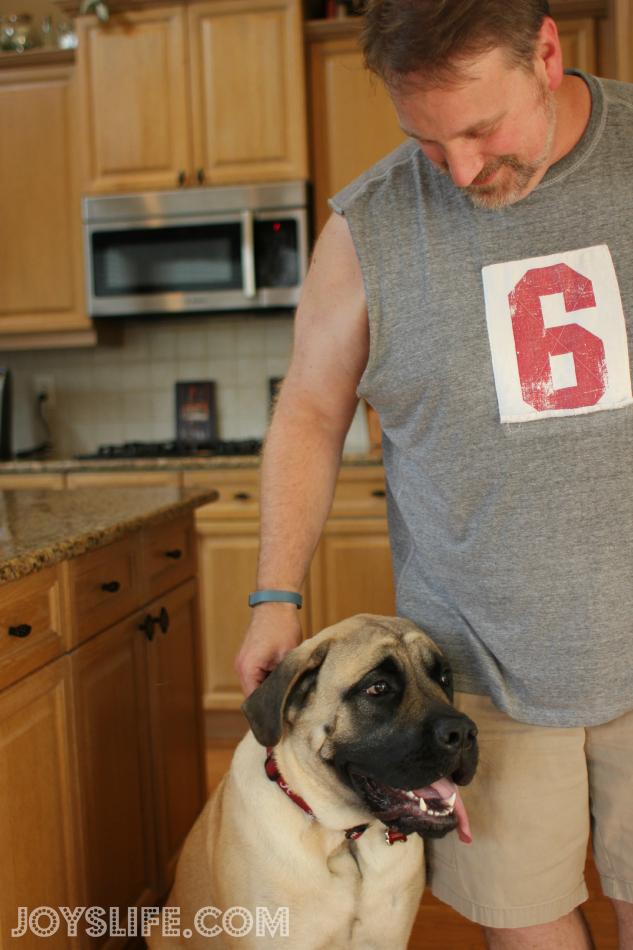 Keeping My Dog, Saban, Healthy and Happy This Summer #petarmorprotects #EnglishMastiff #puppy