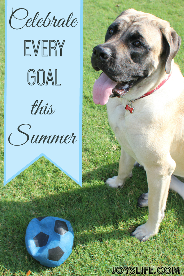 Celebrate Every Goal This Summer #CelebrateEveryGoal #shop #cbias