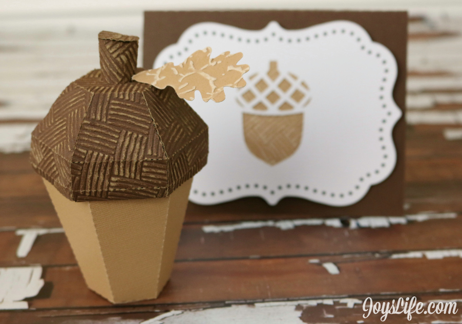 3D Acorn Box and Card #Coredinations #SilhouetteCameo #3d #Acorn #JoysLifeStamps