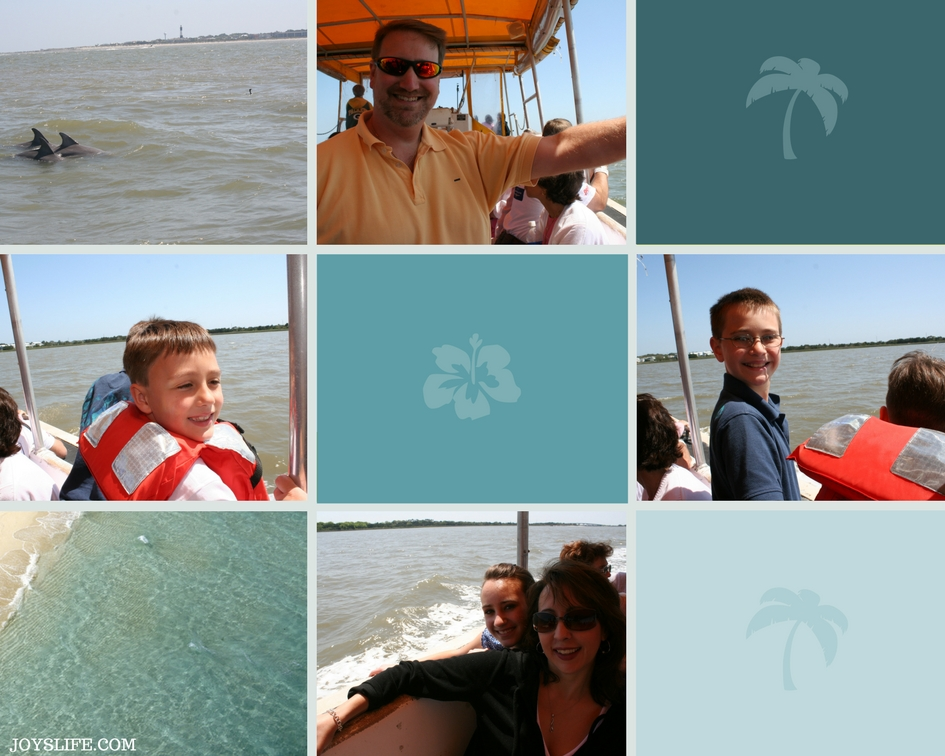 Dolphin Cruise Tybee Island
