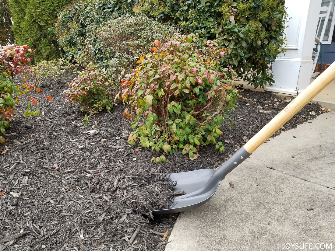 adding black mulch to flower beds
