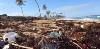 플라스틱 쓰레기와 해변