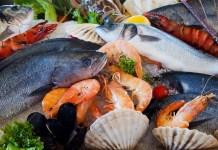 생선, 해산물 자료사진