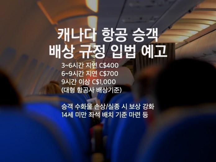"""""""항공사의 승객 배상 기준 정비한다"""""""