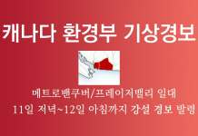 2019년 3월11일 메트로밴쿠버 강설경보
