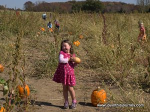girl and gourd
