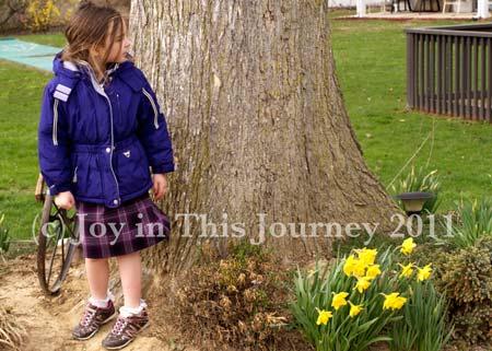 Little girl, huge oak tree, and daffodils