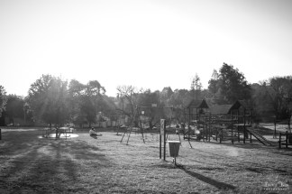 Black and white image in park