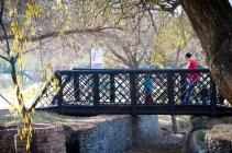 Bridge in Lonehill Nature Reserve