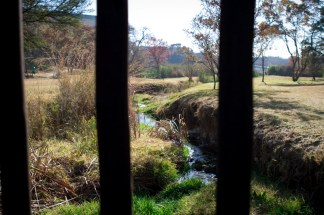 Lonehill Nature Reserve