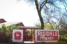 Risidale Primary School