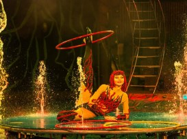 SPLASH! The Water Circus - Photo 10