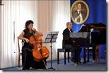 violonchel
