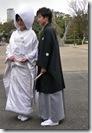 В парке у замка Осака