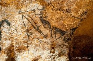 """La seule représentation de l'Homme dans la Grotte de Lascaux dans un lieu reculé au plus profond de la Grotte nommé """"Le Puits"""""""