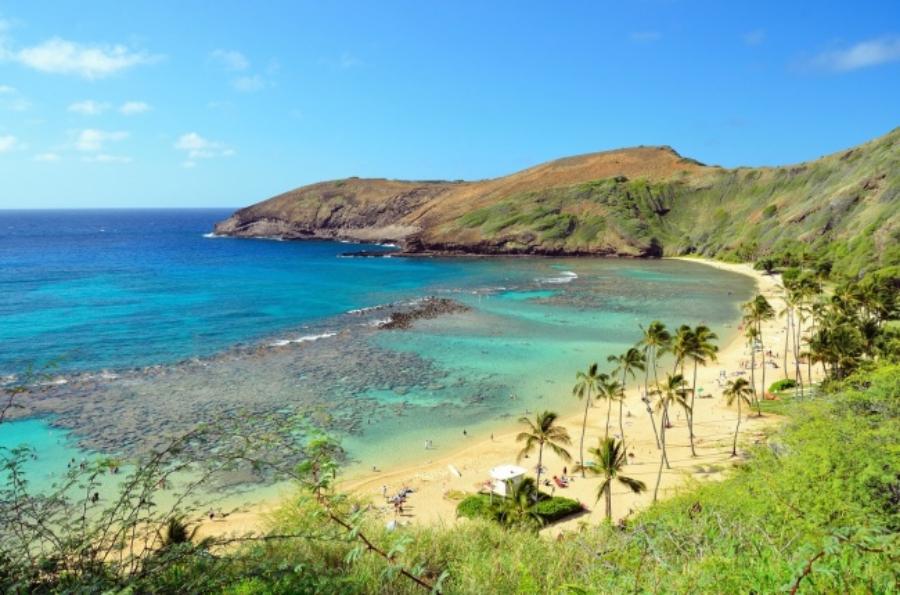 アメリカ・ハワイのおすすめ観光スポット:ハナウマ湾