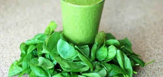 Spinach protein