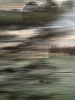 Scottish-Lowlands_train7