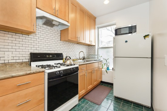 NY apartment photographer one bedroom apartment crown heights brooklyn ny kitchen