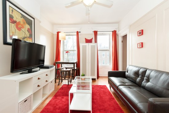 NY apartment photographer one bedroom apartment crown heights brooklyn nyc living room