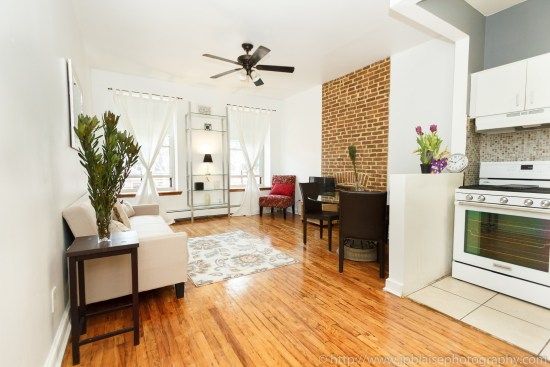 new york city apartment photographer one bedroom harlem living room