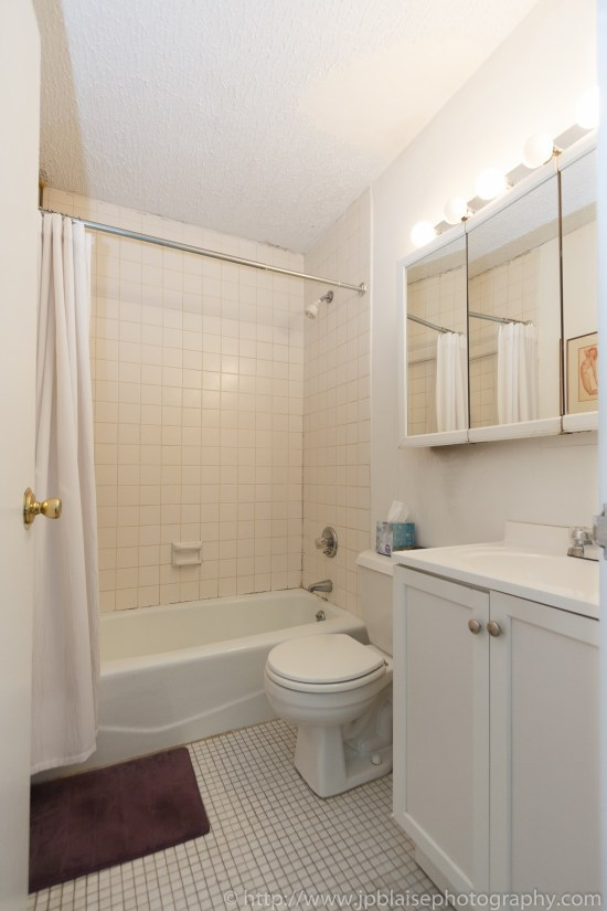 ny apartment photographer work one bedroom nyc midtown east views bathroom