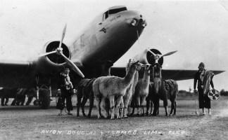 DC-2 with llamas (panamericangrace.com).