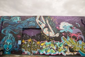 Winwood Walls Miami-4