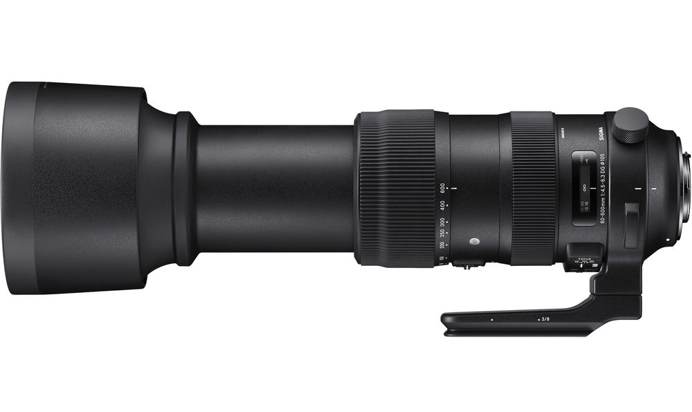 Sigma 60-600mm f/4.5-6.3 DG OS HSM Review