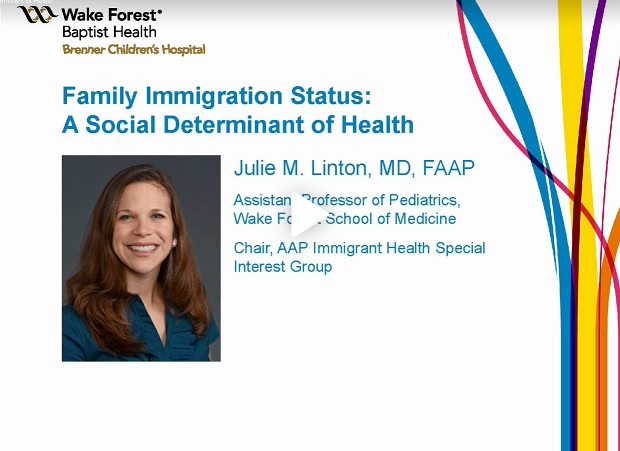 Julie Linton Immigrant Children