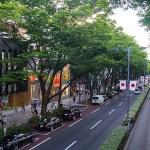 시부야(渋谷), 하라주쿠(原宿), 오모테산도(表参道)