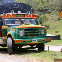 Buga-Bus