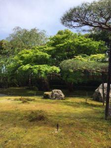 湯豆腐嵯峨野 庭2.JPG