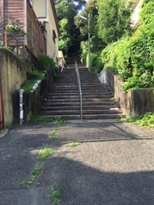 船岡山 階段
