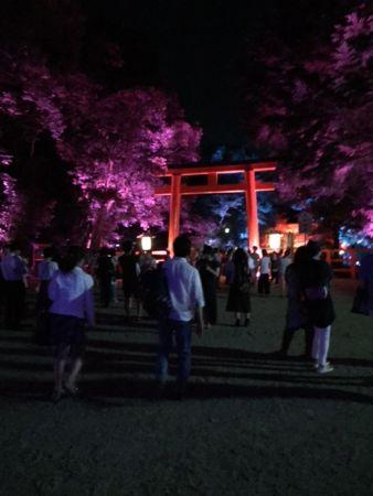 京都 下鴨神社 夏の終わりのライトアップ 2016